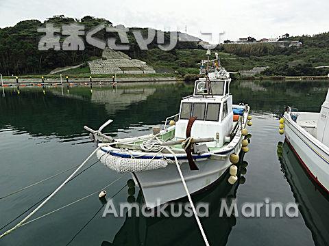 崎山SY 24