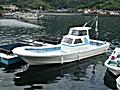 浜崎造船 28 (新艇)