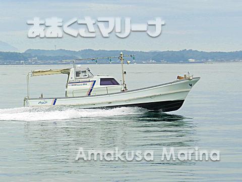ヤンマー DE31F