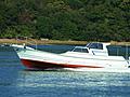 ヤンマー DE35Z