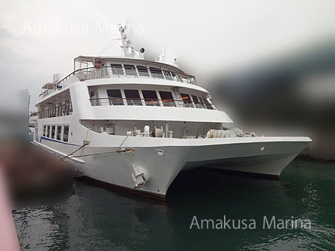 Custom Party Boat 350 person